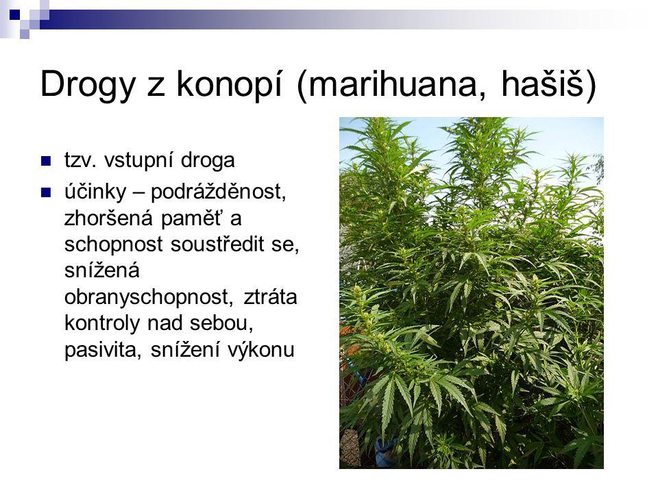 Drogy z konopí (marihuana, hašiš) tzv. vstupní droga účinky – podrážděnost, zhoršená paměť a schopnost soustředit se, snížená obranyschopnost, ztráta