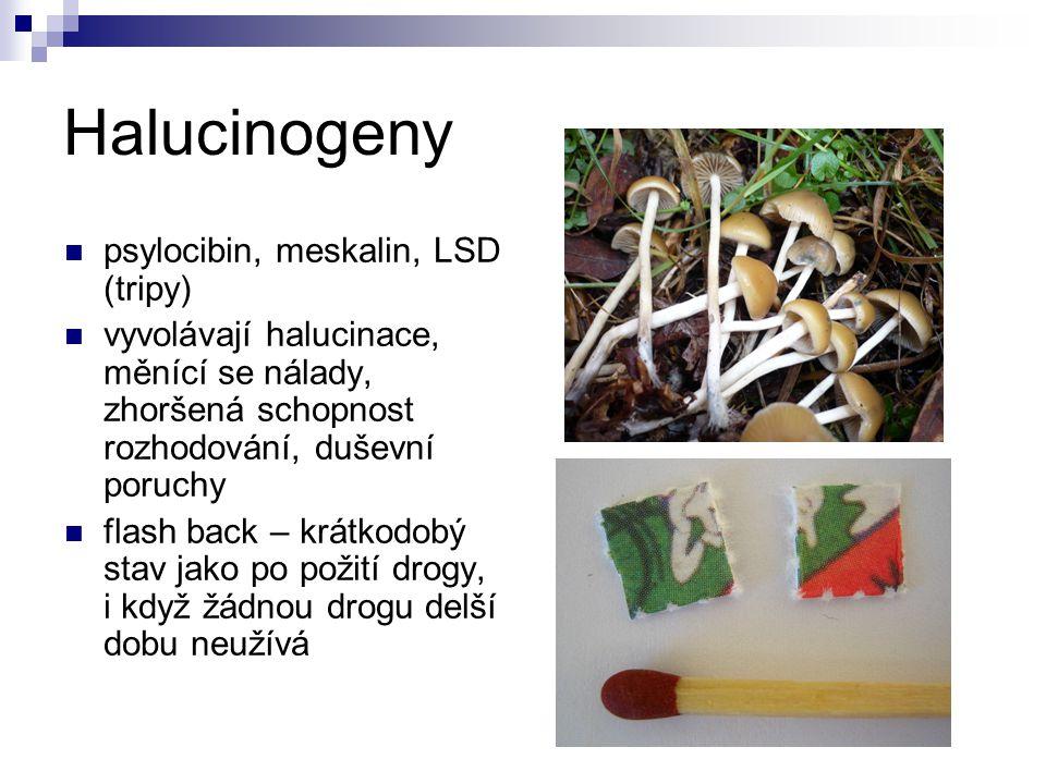 Halucinogeny psylocibin, meskalin, LSD (tripy) vyvolávají halucinace, měnící se nálady, zhoršená schopnost rozhodování, duševní poruchy flash back – k
