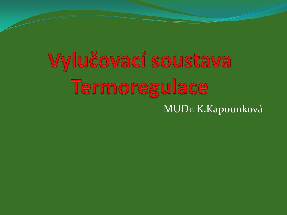 MUDr. K.Kapounková