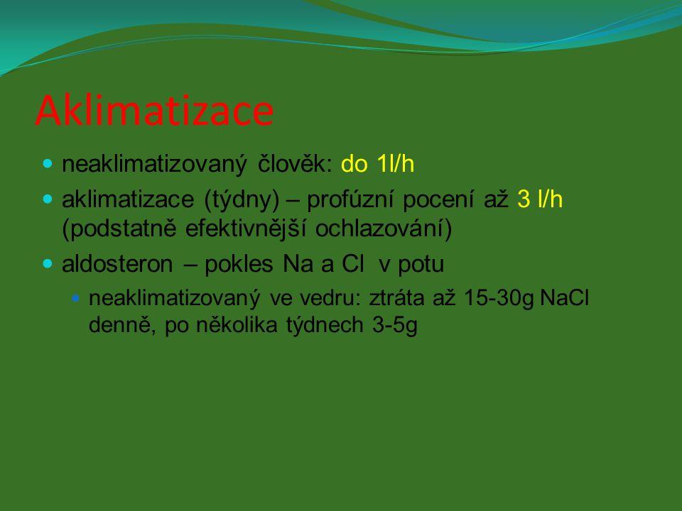 Aklimatizace neaklimatizovaný člověk: do 1l/h aklimatizace (týdny) – profúzní pocení až 3 l/h (podstatně efektivnější ochlazování) aldosteron – pokles