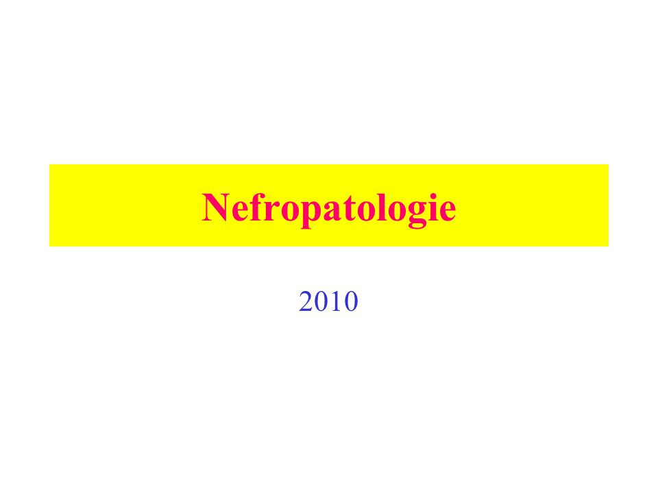 Nefropatologie 2010