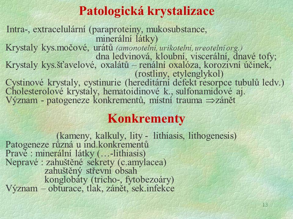 13 Patologická krystalizace Intra-, extracelulární (paraproteiny, mukosubstance, minerální látky) Krystaly kys.močové, urátů (amonotelní, urikotelní,