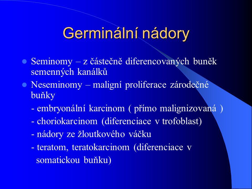 Germinální nádory Seminomy – z částečně diferencovaných buněk semenných kanálků Neseminomy – maligní proliferace zárodečné buňky - embryonální karcinom ( přímo malignizovaná ) - choriokarcinom (diferenciace v trofoblast) - nádory ze žloutkového váčku - teratom, teratokarcinom (diferenciace v somatickou buňku)