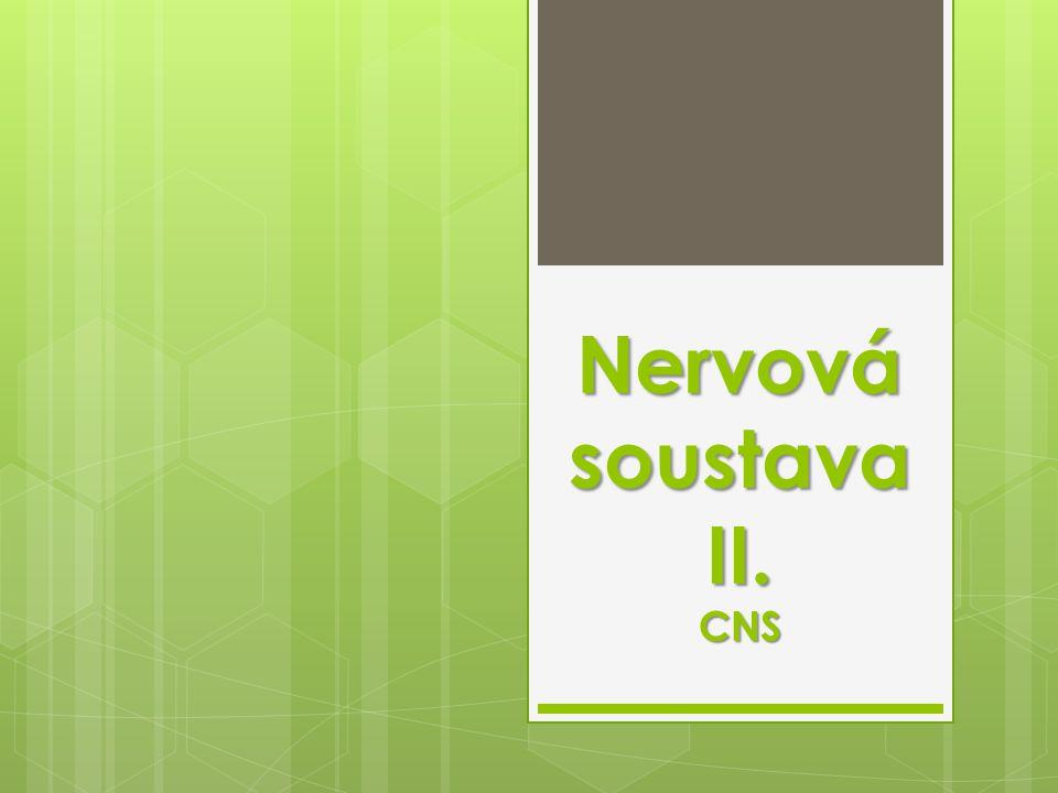 Nervová soustava II. CNS
