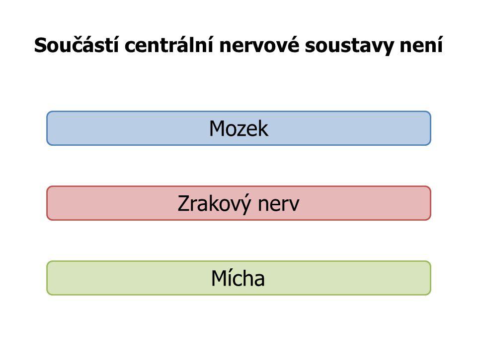 Součástí centrální nervové soustavy není Mozek Zrakový nerv Mícha