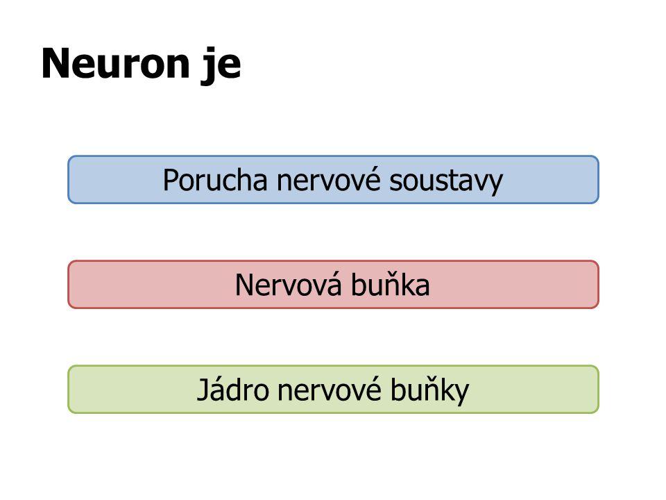 Neuron je Porucha nervové soustavy Nervová buňka Jádro nervové buňky