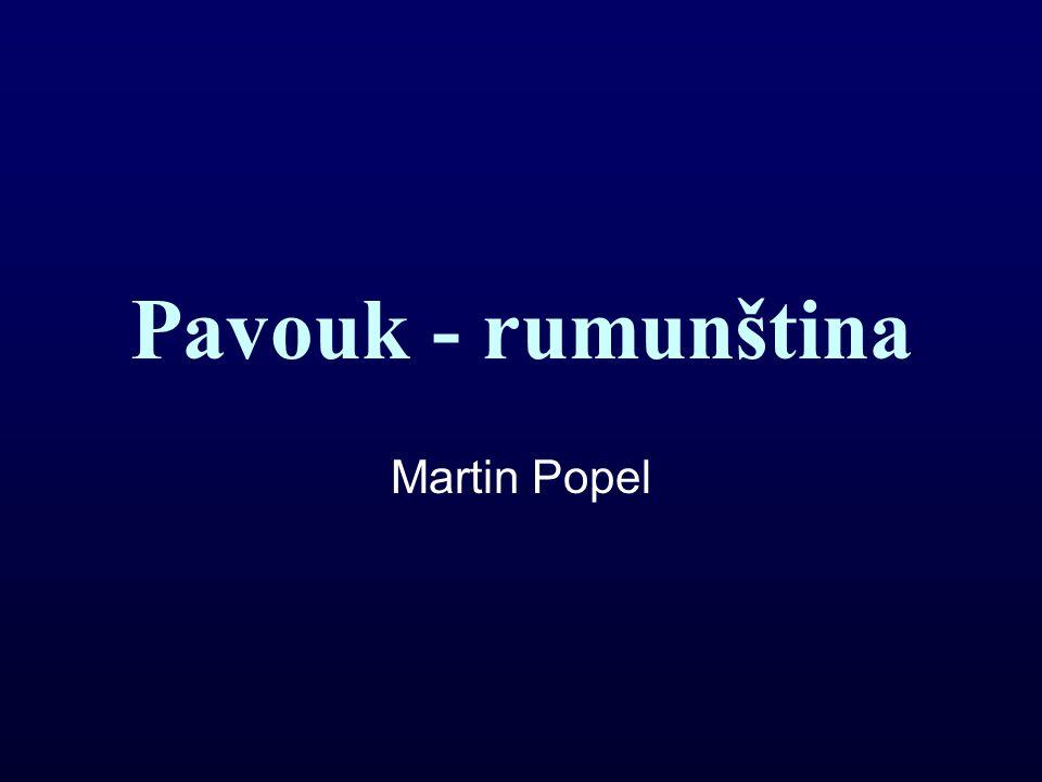 Pavouk - rumunština Martin Popel