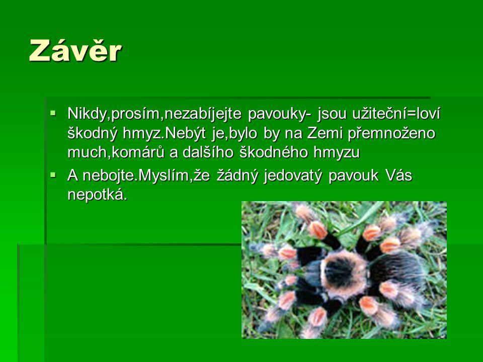 Závěr  Nikdy,prosím,nezabíjejte pavouky- jsou užiteční=loví škodný hmyz.Nebýt je,bylo by na Zemi přemnoženo much,komárů a dalšího škodného hmyzu  A