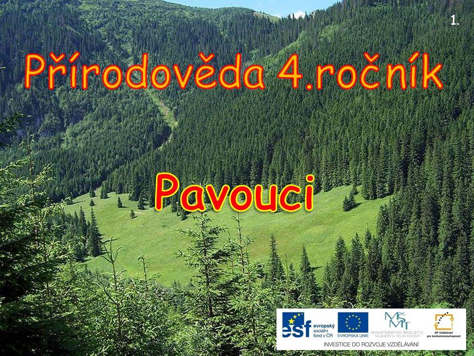 Na celém světe je známo asi 40 000 druhů.V České republice žije 855 druhů.