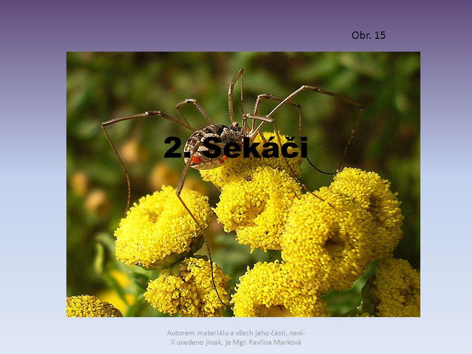 2. Sekáči Obr. 15 Autorem materiálu a všech jeho částí, není- li uvedeno jinak, je Mgr. Pavlína Marková