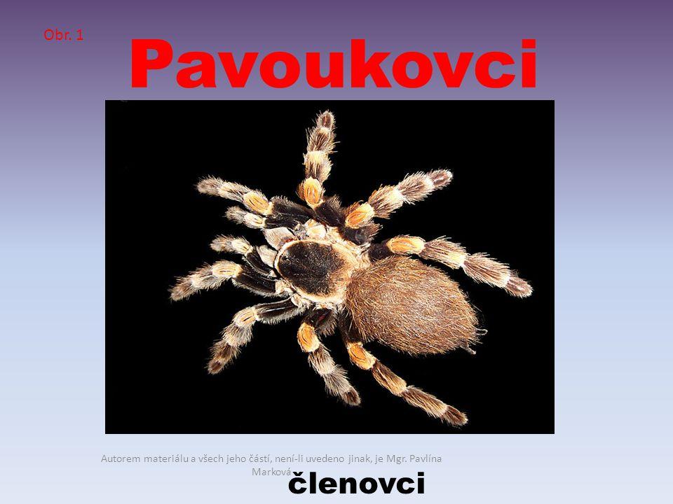 Pavoukovci členovci Obr. 1 Autorem materiálu a všech jeho částí, není-li uvedeno jinak, je Mgr. Pavlína Marková