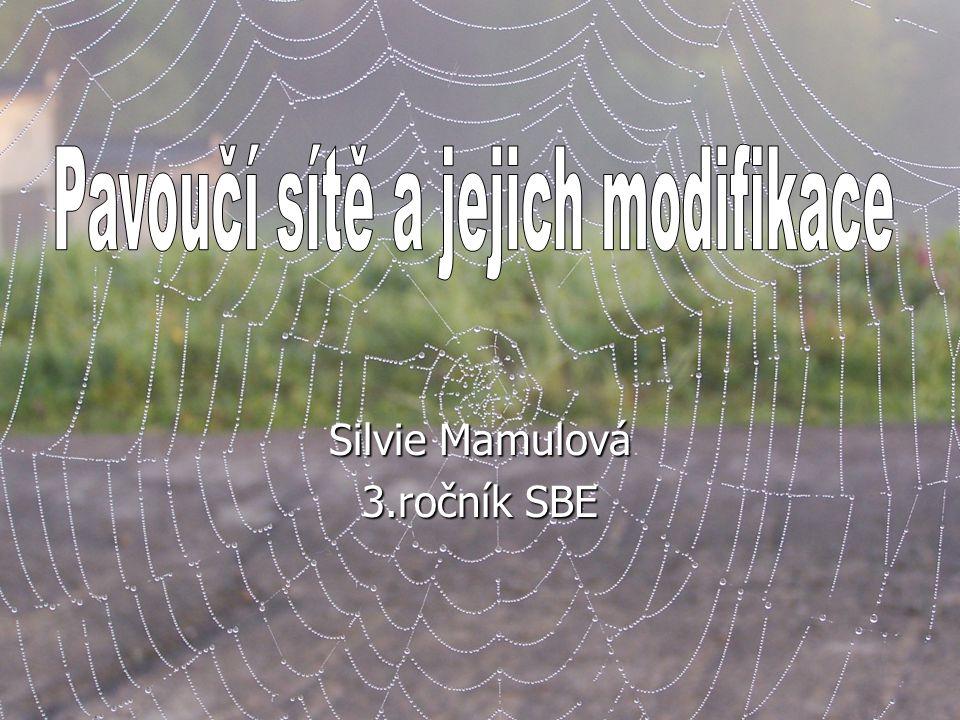 Silvie Mamulová 3.ročník SBE
