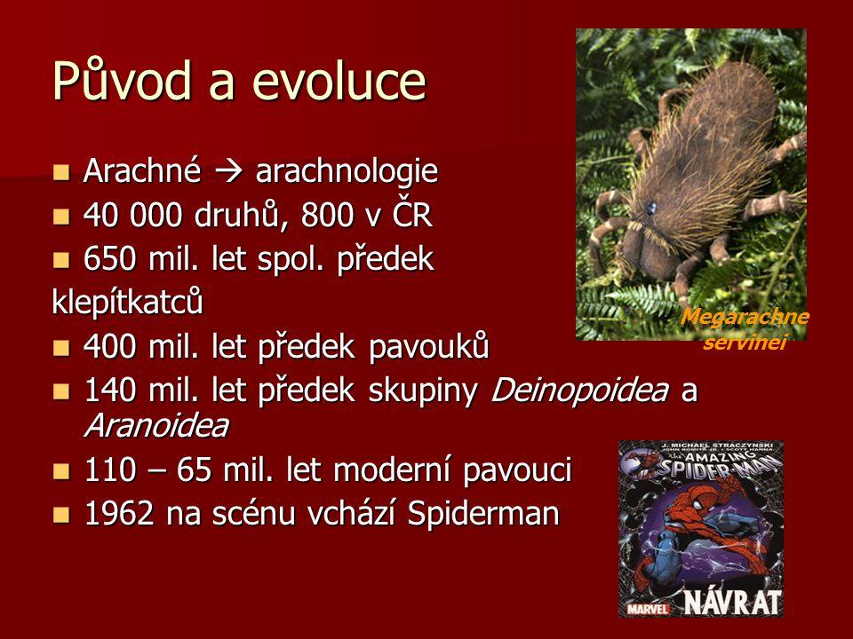 Původ a evoluce Arachné  arachnologie Arachné  arachnologie 40 000 druhů, 800 v ČR 40 000 druhů, 800 v ČR 650 mil.