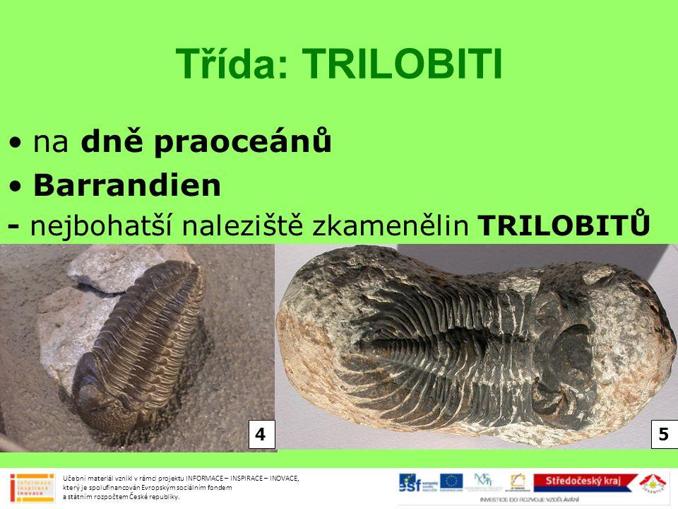 Třída: TRILOBITI na dně praoceánů Barrandien - nejbohatší naleziště zkamenělin TRILOBITŮ Učební materiál vznikl v rámci projektu INFORMACE – INSPIRACE