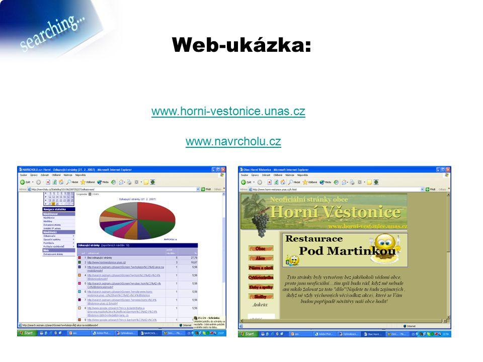 Web-ukázka: www.horni-vestonice.unas.cz www.navrcholu.cz
