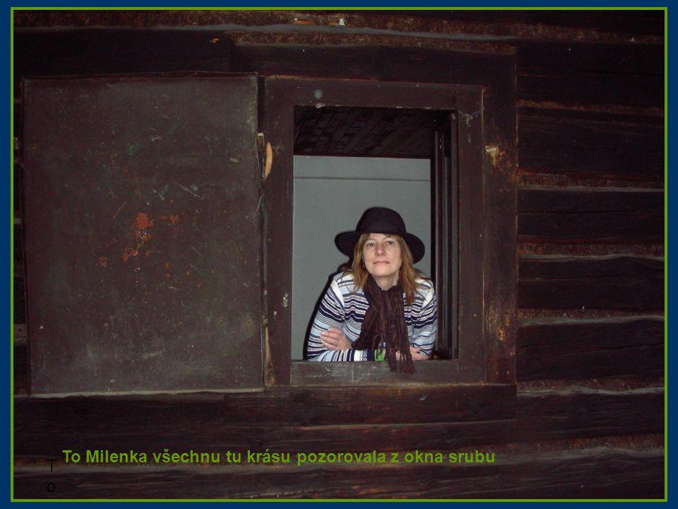 To Milenka To Milenka To Milenka všechnu tu krásu pozorovala z okna srubu