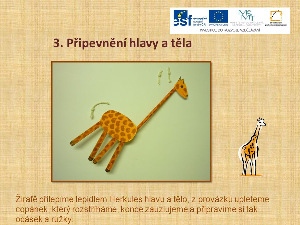 3. Připevnění hlavy a těla Žirafě přilepíme lepidlem Herkules hlavu a tělo, z provázků upleteme copánek, který rozstříháme, konce zauzlujeme a připrav