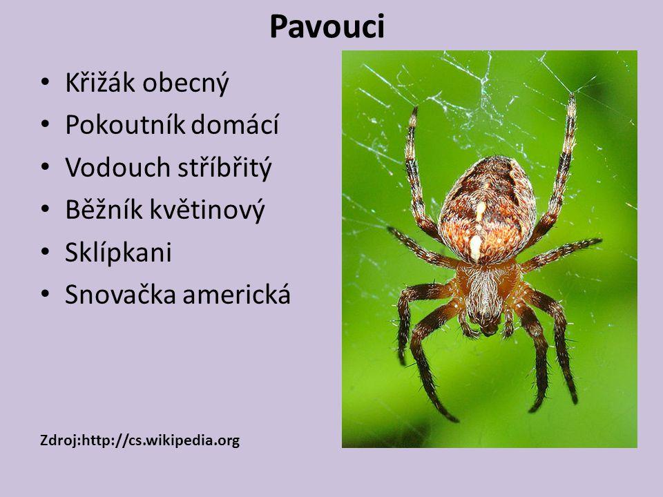 Pavouci Křižák obecný Pokoutník domácí Vodouch stříbřitý Běžník květinový Sklípkani Snovačka americká Zdroj:http://cs.wikipedia.org