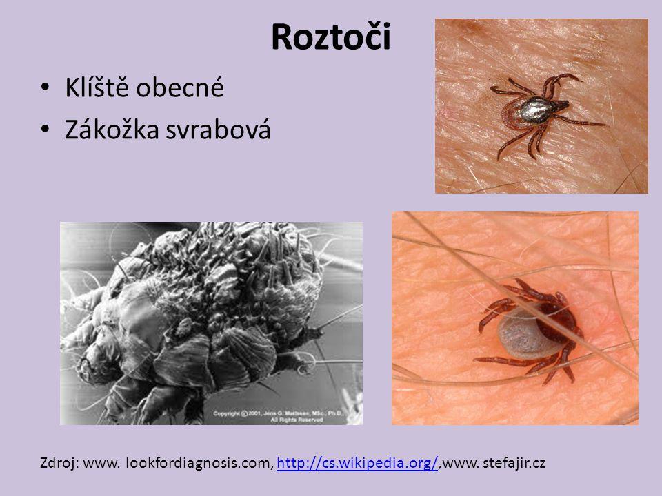 Roztoči Klíště obecné Zákožka svrabová Zdroj: www.