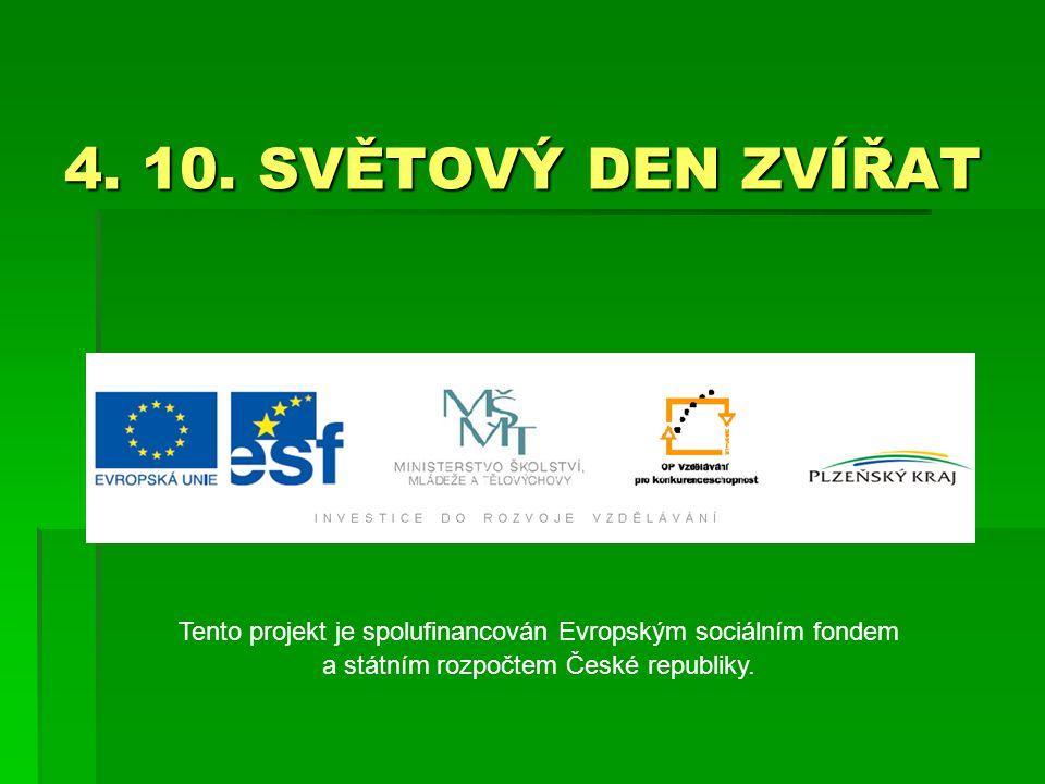 4. 10. SVĚTOVÝ DEN ZVÍŘAT Tento projekt je spolufinancován Evropským sociálním fondem a státním rozpočtem České republiky.