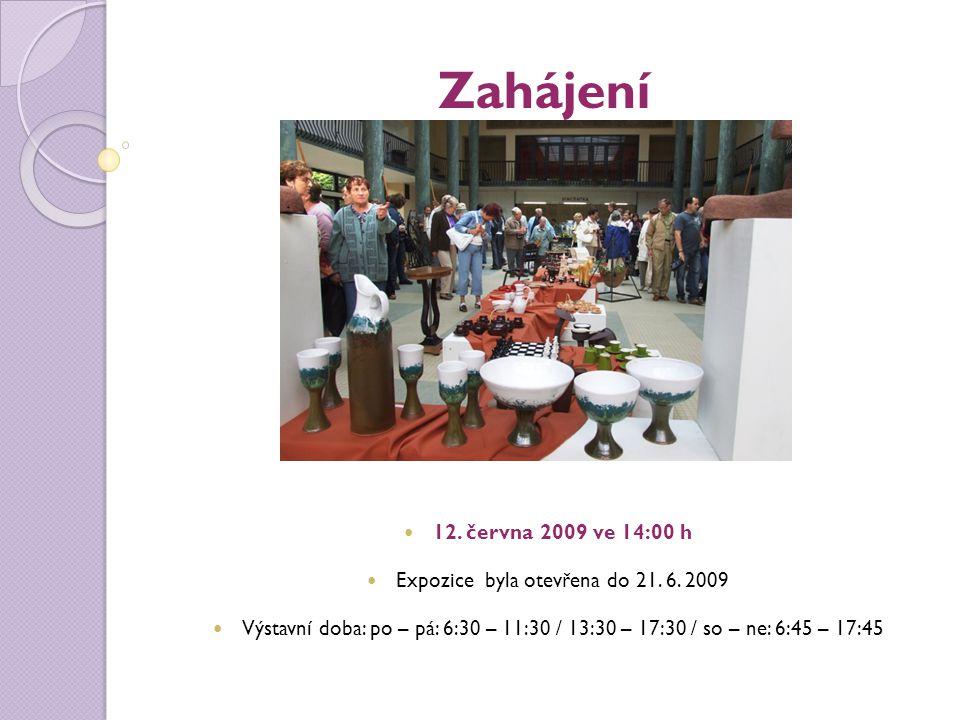 Zahájení 12. června 2009 ve 14:00 h Expozice byla otevřena do 21.