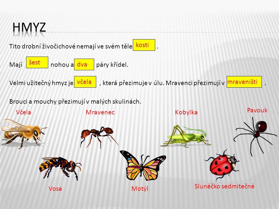 Tito drobní živočichové nemají ve svém těle. Mají nohou a páry křídel. Velmi užitečný hmyz je, která přezimuje v úlu. Mravenci přezimují v. Brouci a m