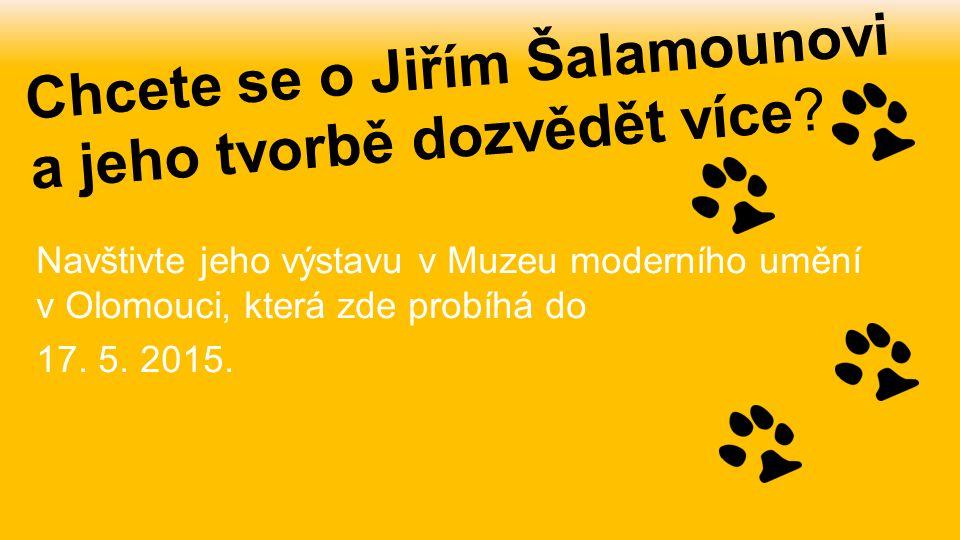 Chcete se o Jiřím Šalamounovi a jeho tvorbě dozvědět více? Navštivte jeho výstavu v Muzeu moderního umění v Olomouci, která zde probíhá do 17. 5. 2015