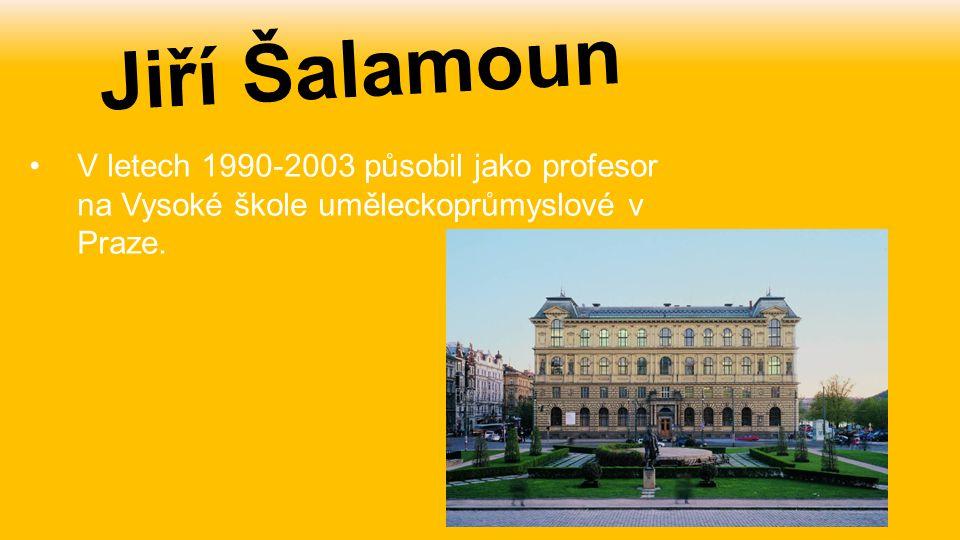 V letech 1990-2003 působil jako profesor na Vysoké škole uměleckoprůmyslové v Praze. Jiří Šalamoun