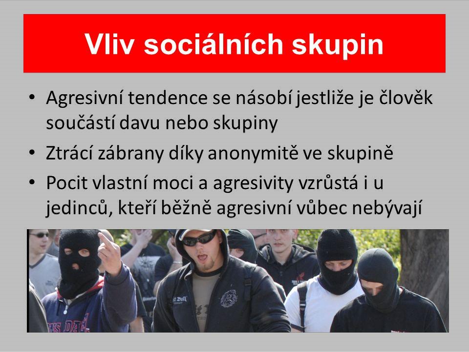 Vliv sociálních skupin Agresivní tendence se násobí jestliže je člověk součástí davu nebo skupiny Ztrácí zábrany díky anonymitě ve skupině Pocit vlastní moci a agresivity vzrůstá i u jedinců, kteří běžně agresivní vůbec nebývají