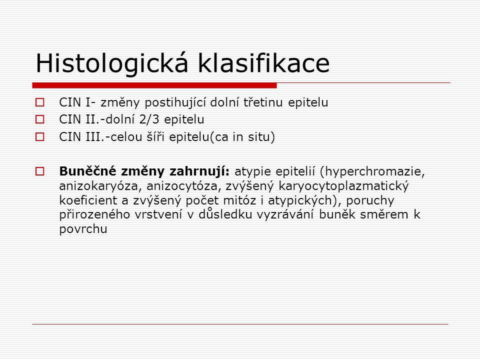 Histologická klasifikace  CIN I- změny postihující dolní třetinu epitelu  CIN II.-dolní 2/3 epitelu  CIN III.-celou šíři epitelu(ca in situ)  Buně