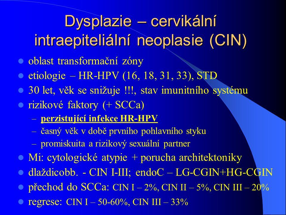 Dysplazie – cervikální intraepiteliální neoplasie (CIN) oblast transformační zóny etiologie – HR-HPV (16, 18, 31, 33), STD 30 let, věk se snižuje !!!, stav imunitního systému rizikové faktory (+ SCCa) – perzistující infekce HR-HPV – časný věk v době prvního pohlavního styku – promiskuita a rizikový sexuální partner Mi: cytologické atypie + porucha architektoniky dlaždicobb.