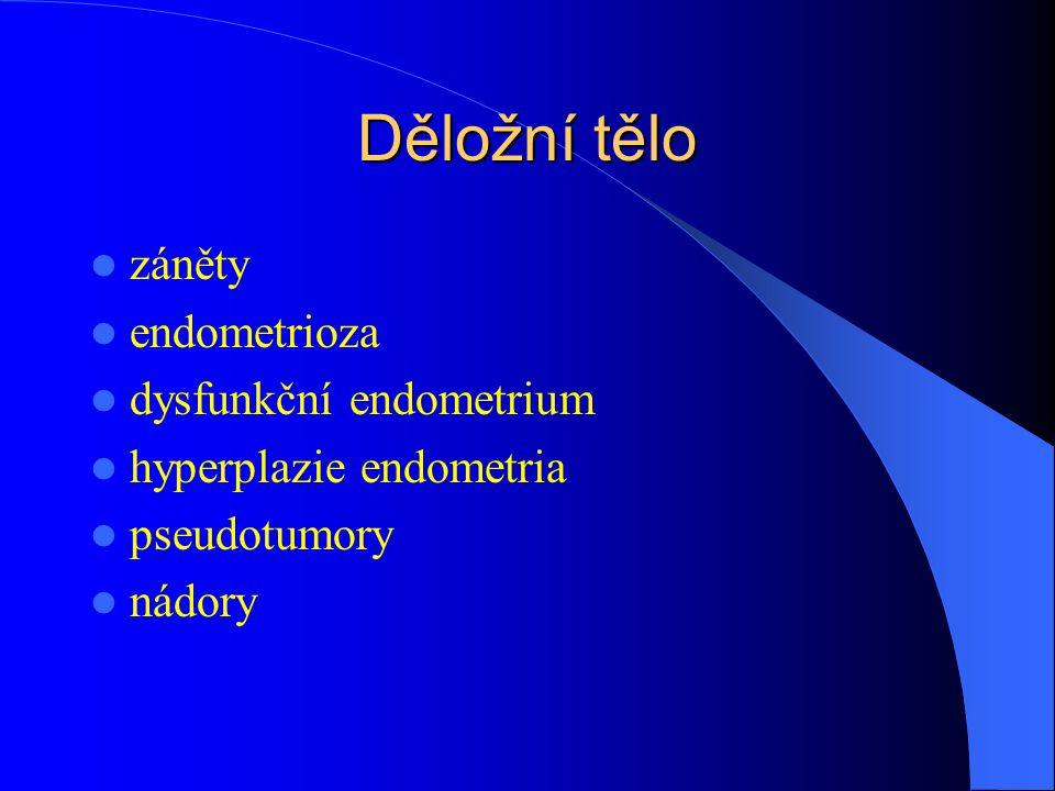 Děložní tělo záněty endometrioza dysfunkční endometrium hyperplazie endometria pseudotumory nádory