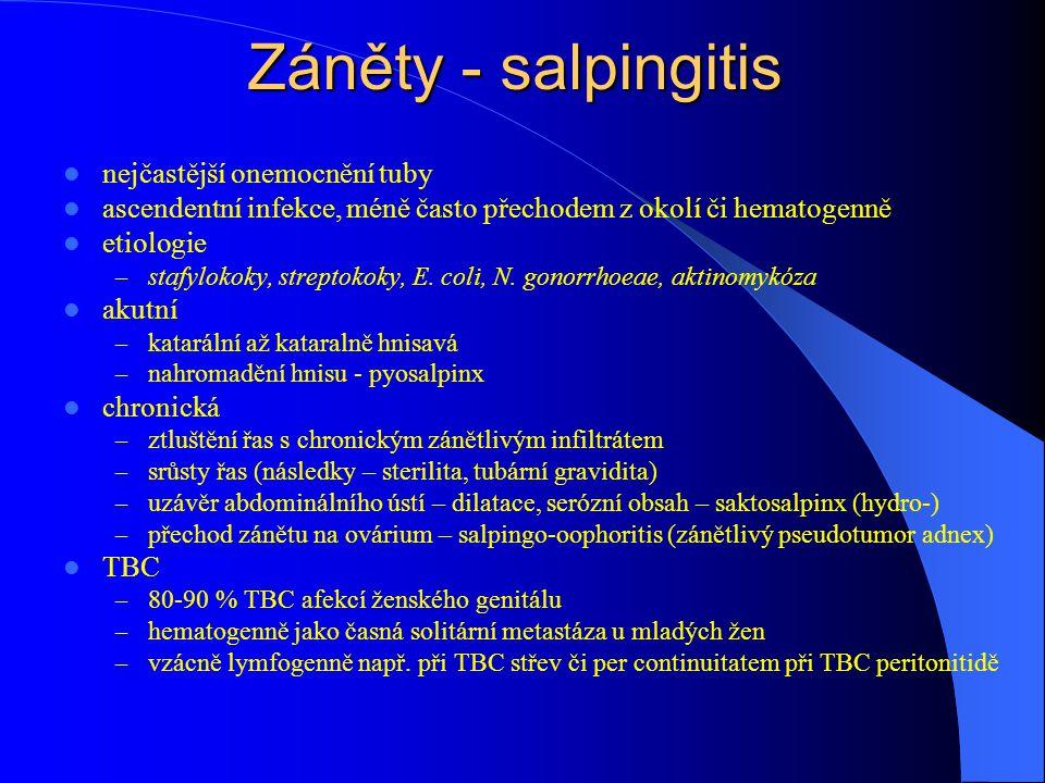 Záněty - salpingitis nejčastější onemocnění tuby ascendentní infekce, méně často přechodem z okolí či hematogenně etiologie – stafylokoky, streptokoky, E.