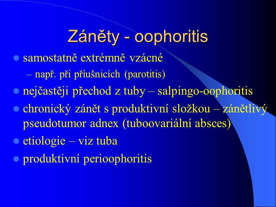 Záněty - oophoritis samostatně extrémně vzácné – např. při příušnicích (parotitis) nejčastěji přechod z tuby – salpingo-oophoritis chronický zánět s p