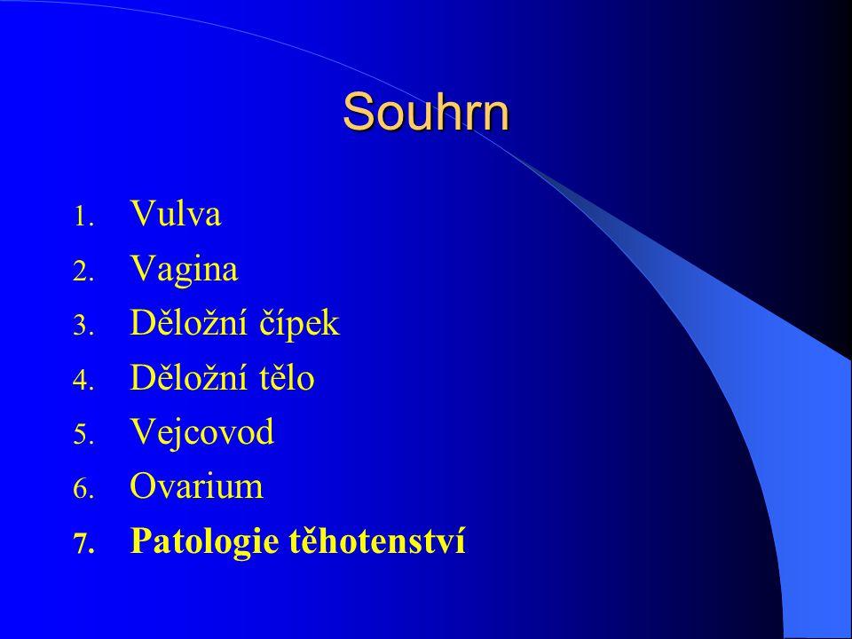 Souhrn 1. Vulva 2. Vagina 3. Děložní čípek 4. Děložní tělo 5. Vejcovod 6. Ovarium 7. Patologie těhotenství