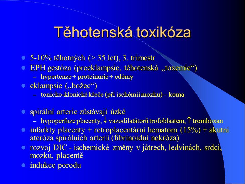 """Těhotenská toxikóza 5-10% těhotných (> 35 let), 3. trimestr EPH gestóza (preeklampsie, těhotenská """"toxemie"""") – hypertenze + proteinurie + edémy eklamp"""