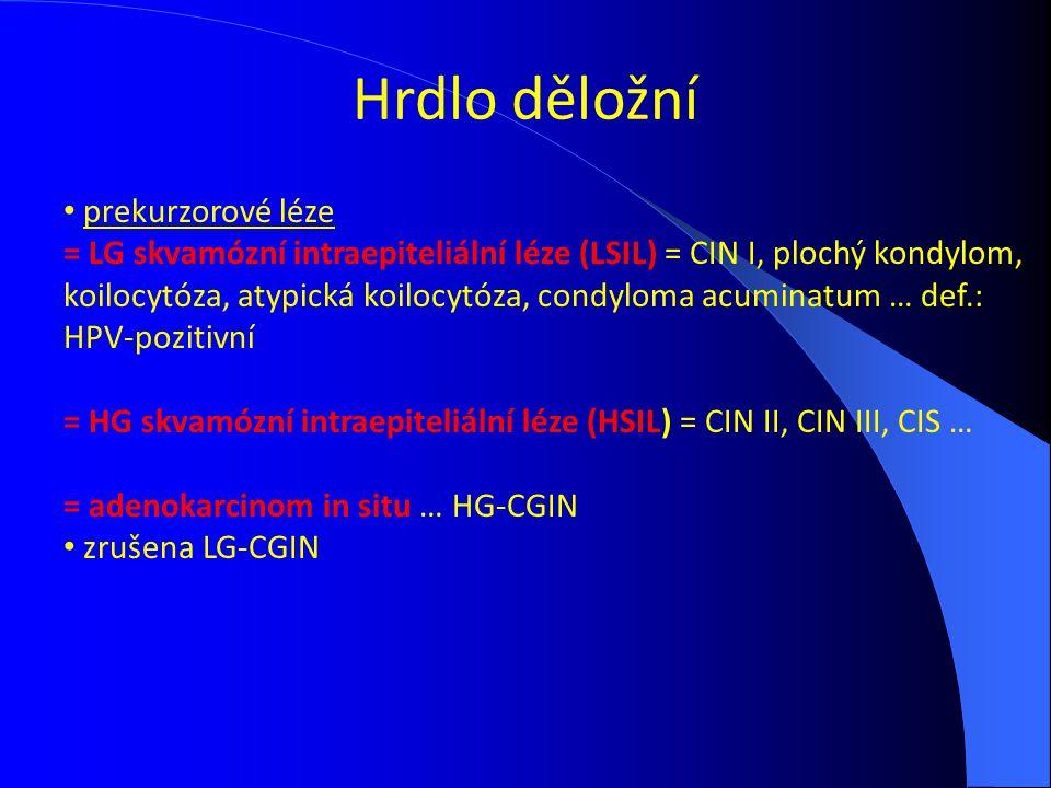 Hrdlo děložní prekurzorové léze = LG skvamózní intraepiteliální léze (LSIL) = CIN I, plochý kondylom, koilocytóza, atypická koilocytóza, condyloma acu