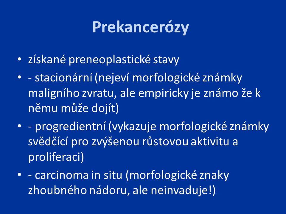 Prekancerózy získané preneoplastické stavy - stacionární (nejeví morfologické známky maligního zvratu, ale empiricky je známo že k němu může dojít) -