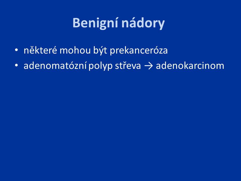 Benigní nádory některé mohou být prekanceróza adenomatózní polyp střeva → adenokarcinom
