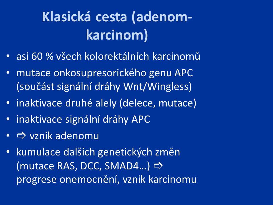 Klasická cesta (adenom- karcinom) asi 60 % všech kolorektálních karcinomů mutace onkosupresorického genu APC (součást signální dráhy Wnt/Wingless) ina
