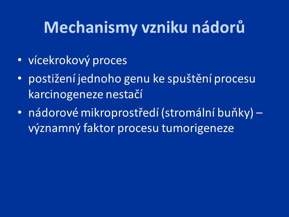 Mechanismy vzniku nádorů vícekrokový proces postižení jednoho genu ke spuštění procesu karcinogeneze nestačí nádorové mikroprostředí (stromální buňky)