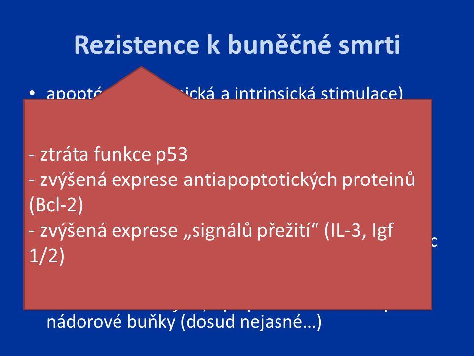 Rezistence k buněčné smrti apoptóza (extrinsická a intrinsická stimulace) pro a protiapoptotické faktory z Bcl-2 rodiny regulačních proteinů Bcl-2 (Bc