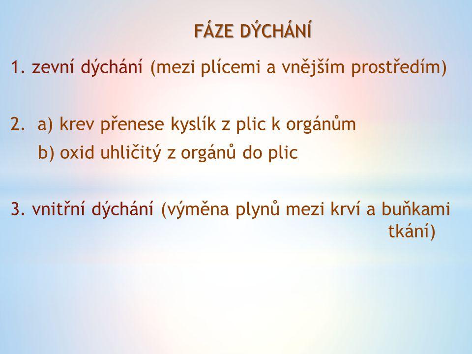 FÁZE DÝCHÁNÍ 1. zevní dýchání (mezi plícemi a vnějším prostředím) 2.