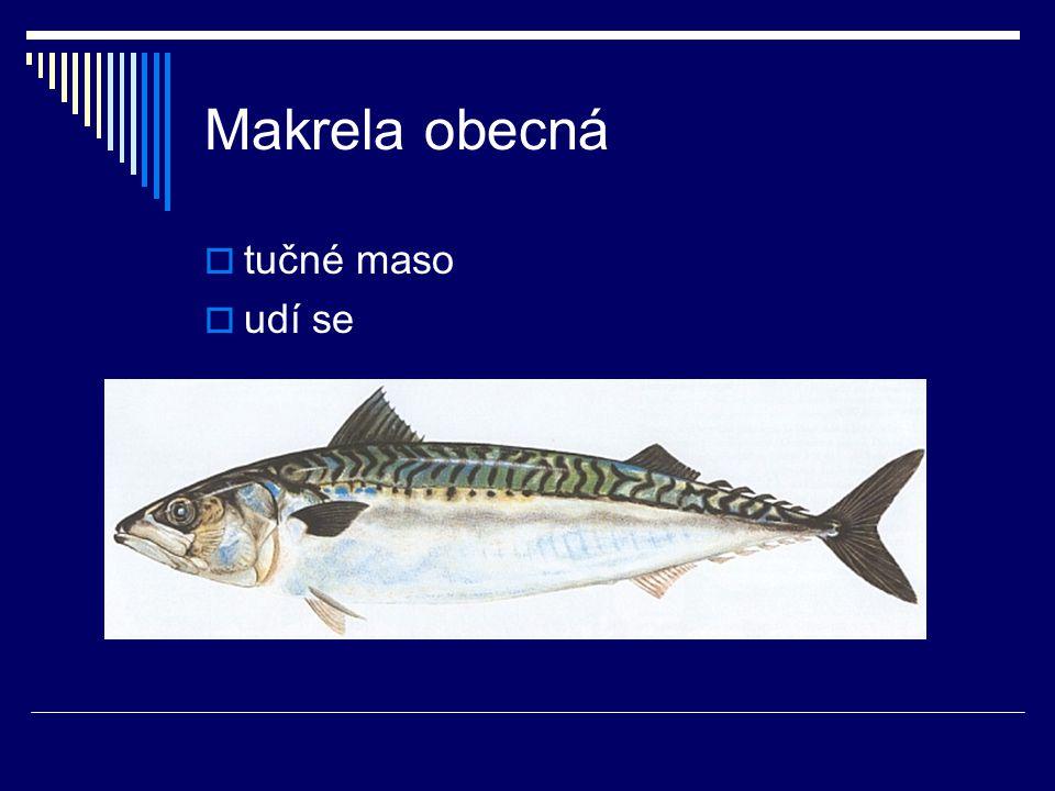 Makrela obecná  tučné maso  udí se