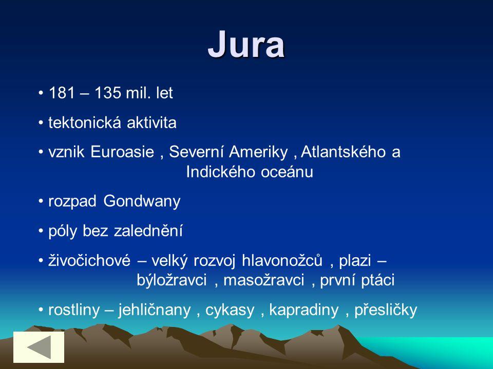 Jura 181 – 135 mil. let tektonická aktivita vznik Euroasie, Severní Ameriky, Atlantského a Indického oceánu rozpad Gondwany póly bez zalednění živočic