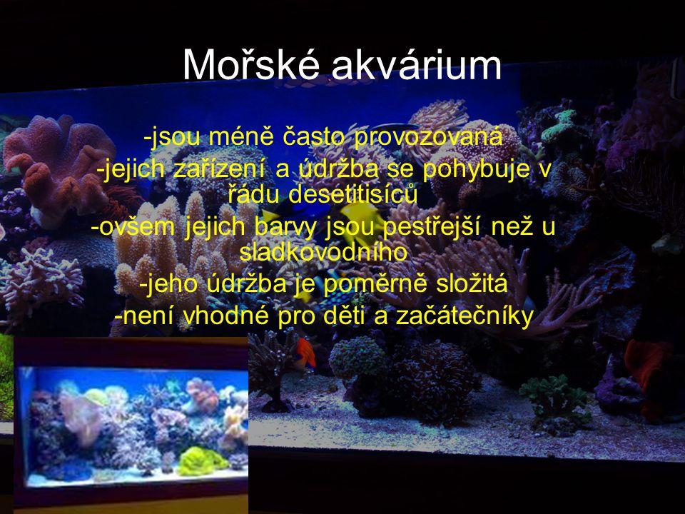 Mořské akvárium -jsou méně často provozovaná -jejich zařízení a údržba se pohybuje v řádu desetitisíců -ovšem jejich barvy jsou pestřejší než u sladkovodního -jeho údržba je poměrně složitá -není vhodné pro děti a začátečníky