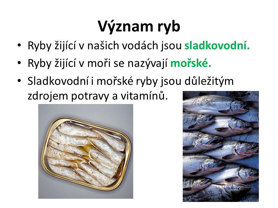 Význam ryb Ryby žijící v našich vodách jsou sladkovodní. Ryby žijící v moři se nazývají mořské. Sladkovodní i mořské ryby jsou důležitým zdrojem potra