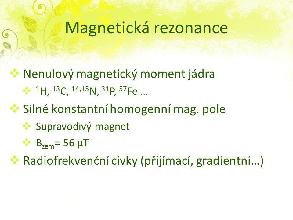 Magnetická rezonance  Nenulový magnetický moment jádra  1 H, 13 C, 14,15 N, 31 P, 57 Fe …  Silné konstantní homogenní mag. pole  Supravodivý magne