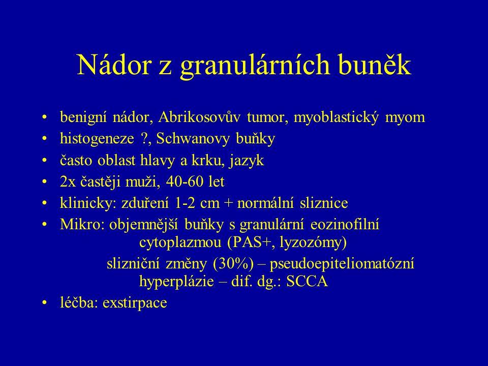 Nádor z granulárních buněk benigní nádor, Abrikosovův tumor, myoblastický myom histogeneze ?, Schwanovy buňky často oblast hlavy a krku, jazyk 2x čast