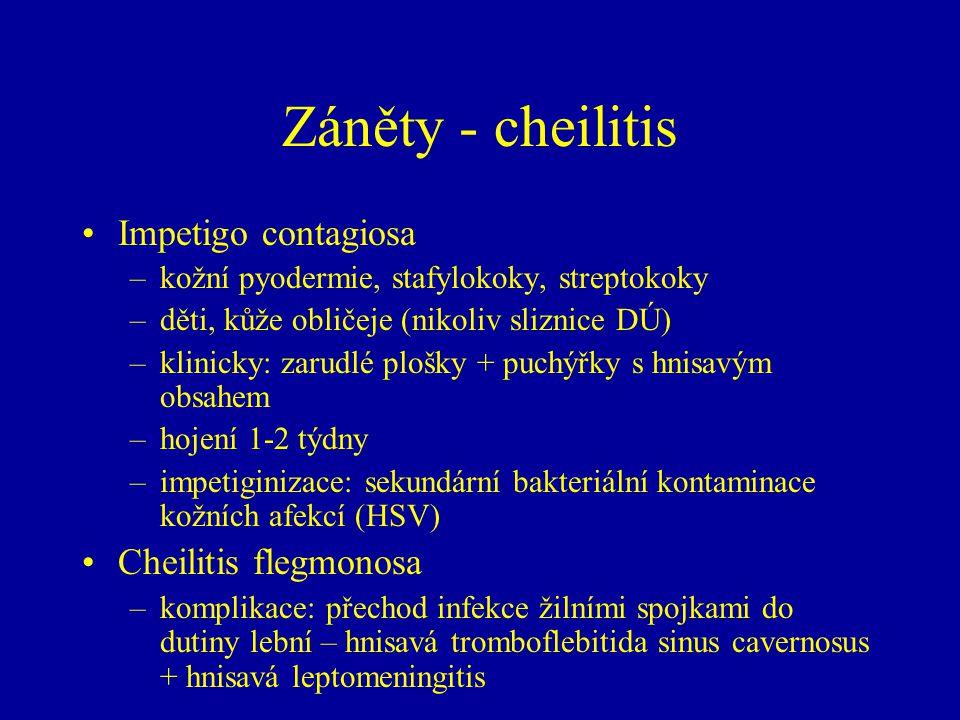 Záněty - cheilitis Impetigo contagiosa –kožní pyodermie, stafylokoky, streptokoky –děti, kůže obličeje (nikoliv sliznice DÚ) –klinicky: zarudlé plošky